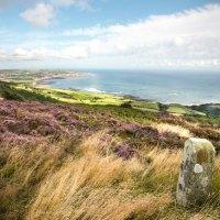 Englands Küsten in Buch und Film