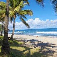 Die Insel La Réunion als nachhaltiges Reiseziel