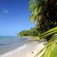 Insel-Hopping-Abenteuer in Panama