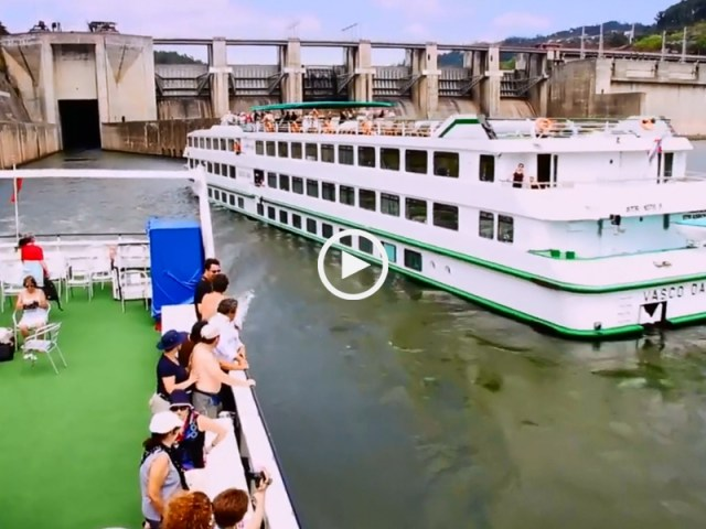 Maravilhosa descida do Douro, a bordo