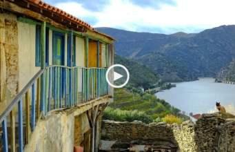 Vindimas no Douro: São Xisto