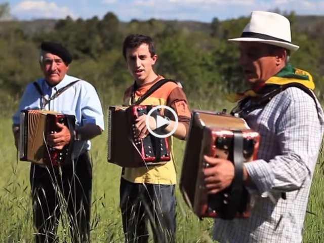 Lindo! Avó, Pai e Filho 3 gerações nas concertinas!