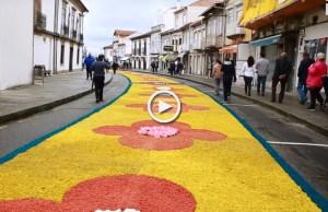 Tapetes floridos embelezam ruas de Caminha