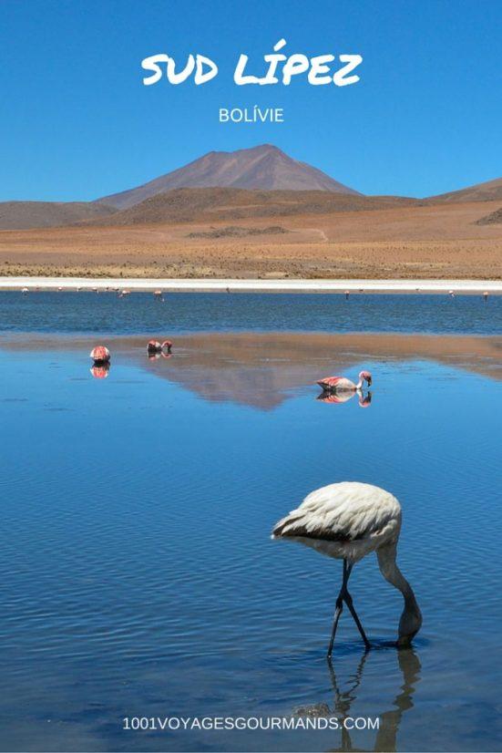 Na jihu Bolívie najdete Sud-Lípez, jednu z nejkrásnějších Andských krajin s barevnými lagunami s plameňáky, vulkány a gejzíry, či surrealistickou pouští.