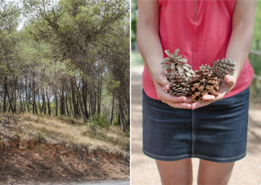 penedes_diptych-14