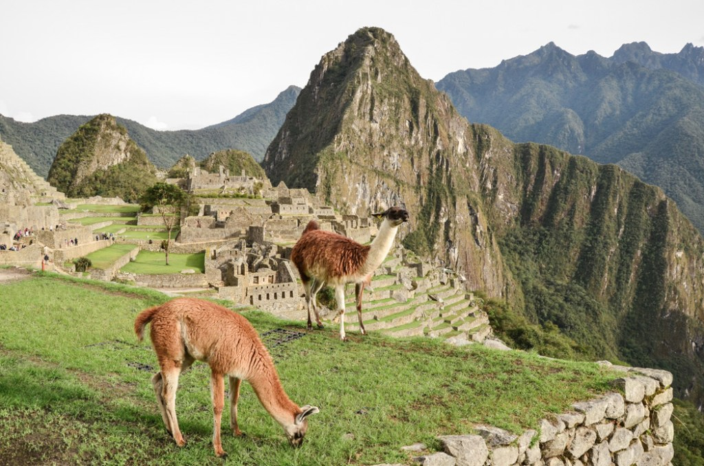 After we visited the sacred place, I decided to devote one single post to some important facts what you must know before you go to Machu Picchu.
