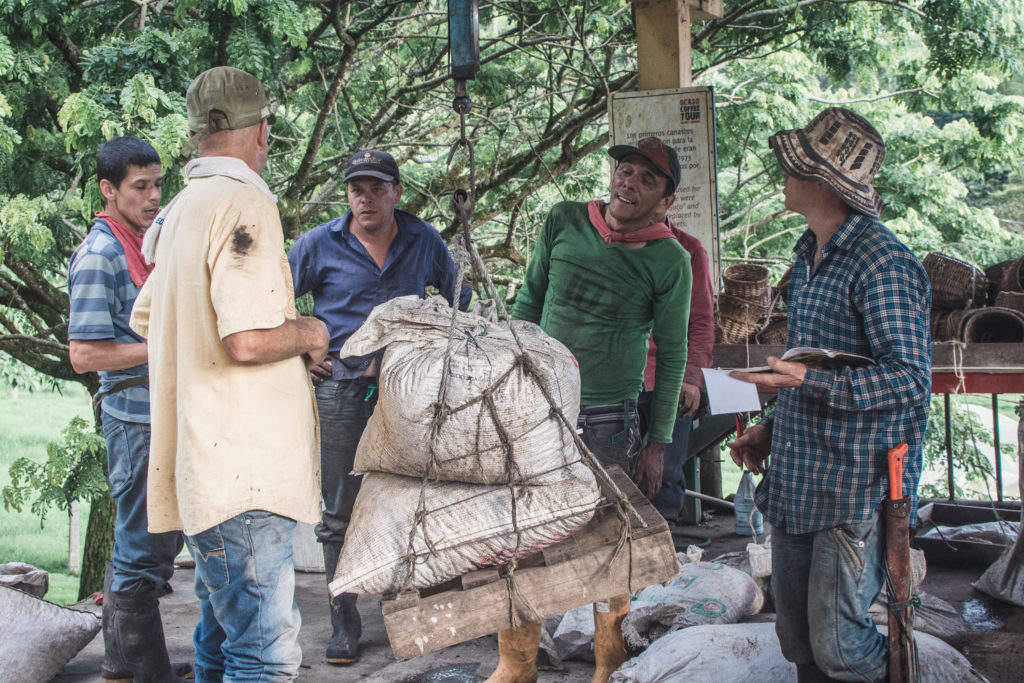 Vzhledem k tomu, že je Kolumbie jeden z největších exportérů kávy na světě, nebylo možné, abychom vynechali zastávku v Salentu za kolumbijskou kávou.