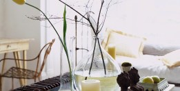 Feng Shui van jouw woonkamer om je gezinsleven en woongenot te versterken.