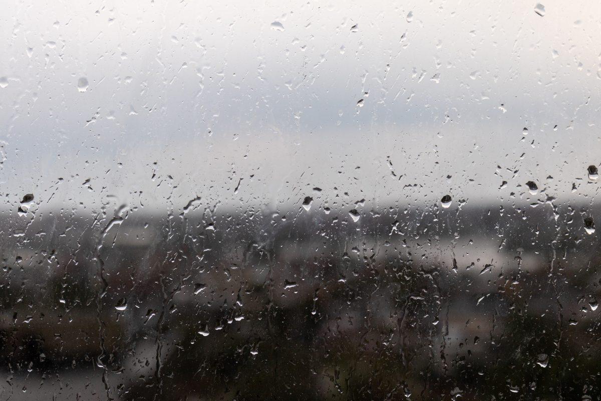 chuva vista da janela