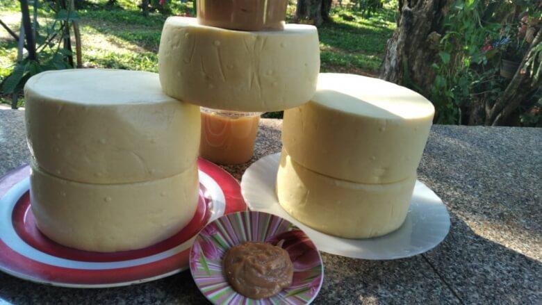 queijos-leite-feira-gramadao-vila-a-foz