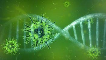 corona-virus-brasil-pandemia-mundo