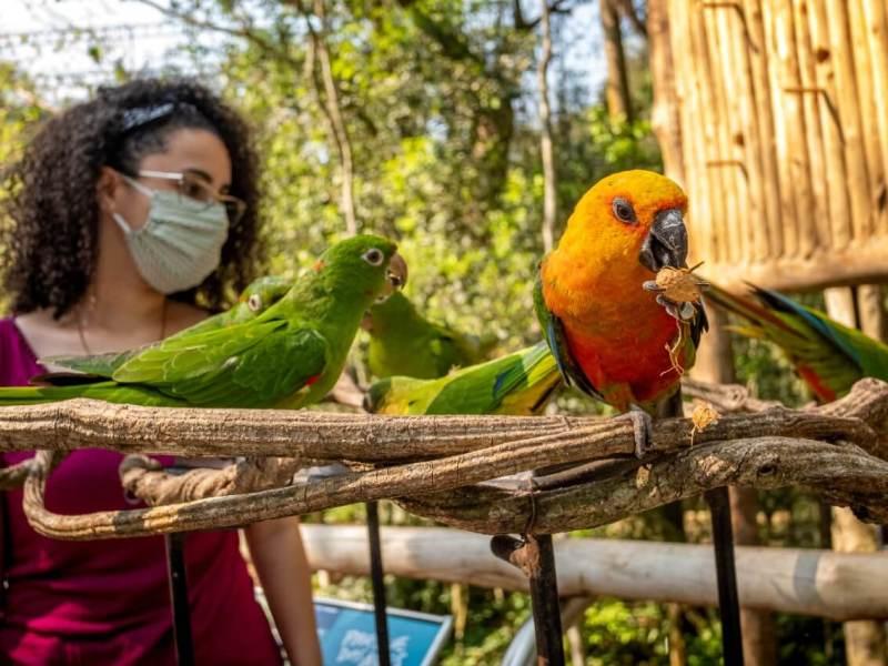 parque-das-aves-foz-brasil