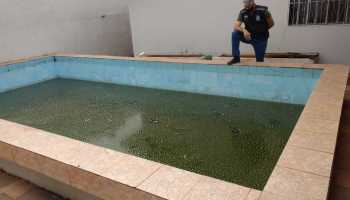 dengue-foz
