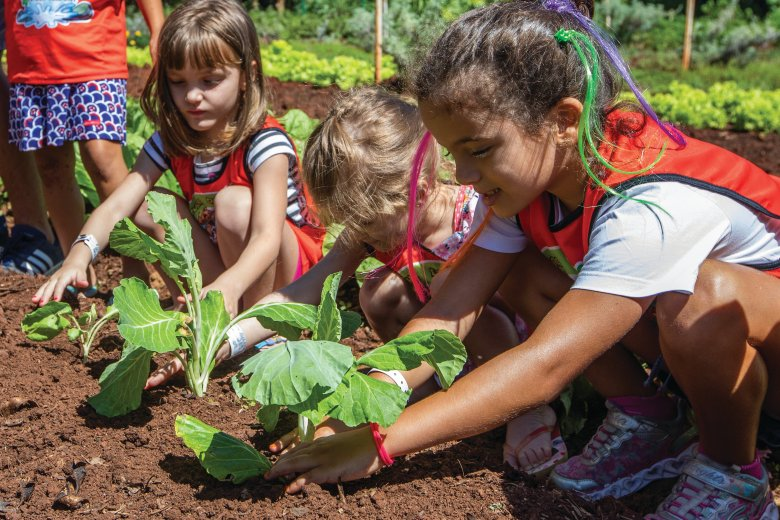 Horta Bourbon Foz crianças plantando
