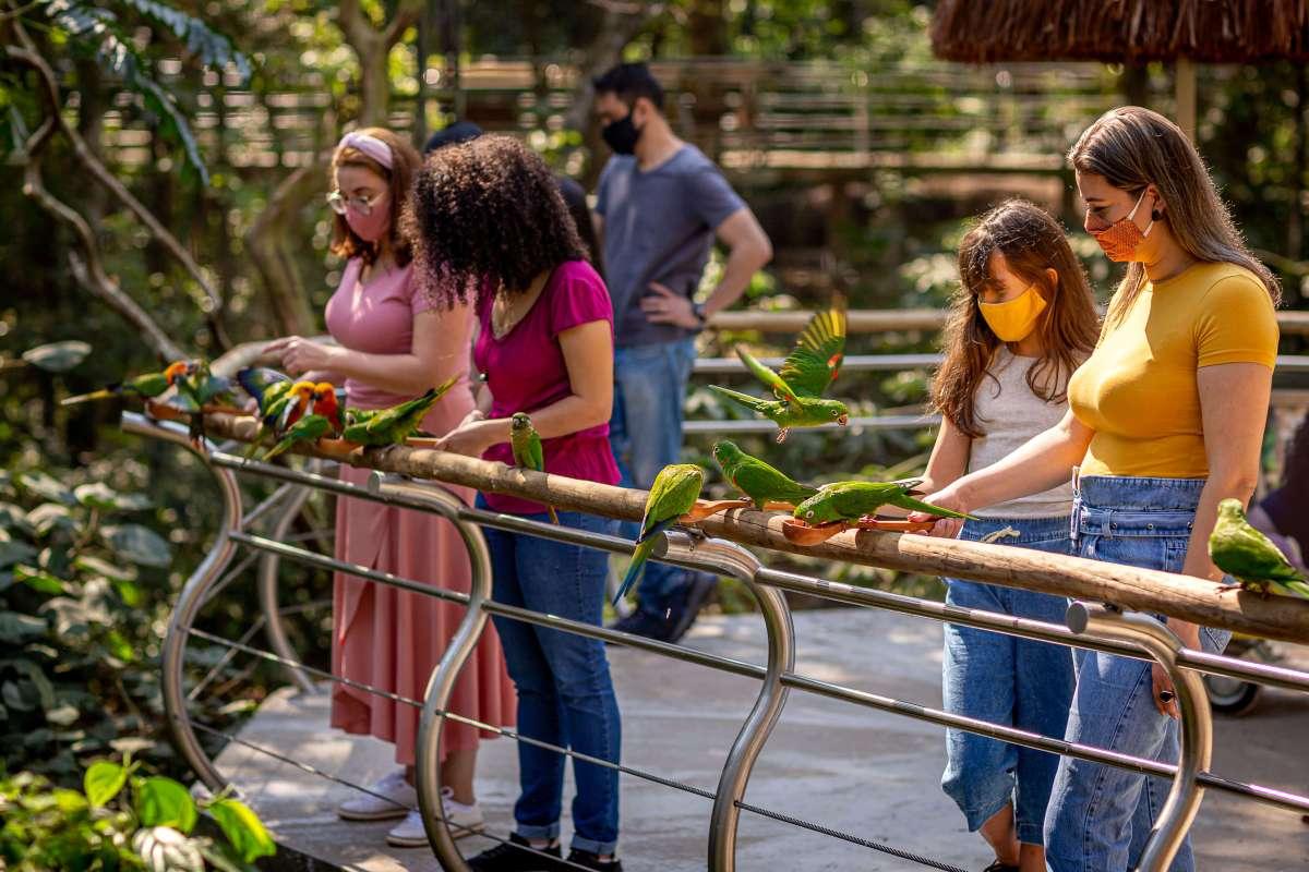 parque-das-aves-turismo-foz-familia
