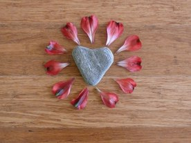 Petals from the flower arrangement surround my heart shaped rock to create a focal point.