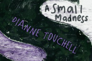 BOOK REVIEW: A Small Madness by Dianne Touchell