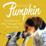 BOOK REVIEW: Pumpkin – The Raccoon Who Thought She Was a Dog by Laura Young
