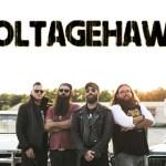 A Dirty Dozen with VOLTAGEHAWK – April 2020