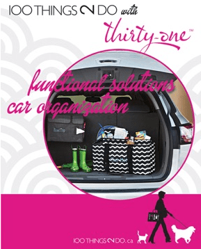 100 Ways to use the Thirty-One Functional Solutions - car organization kit