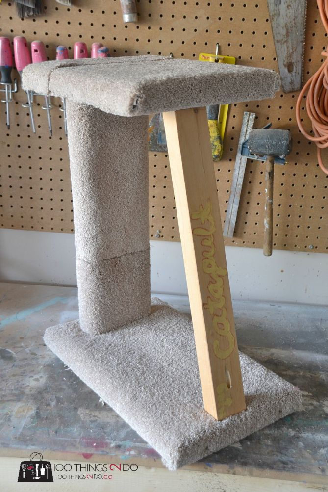 Cat scratching post 6