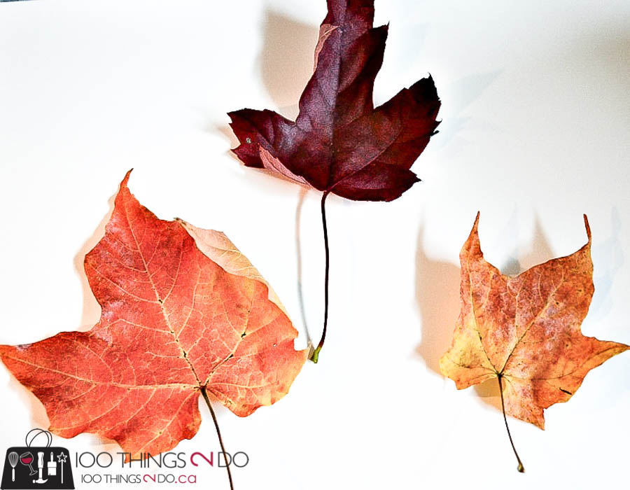 Leaf creatures, leaf craft, Fall crafts, Autumn crafts, crafts for kids, leaf art