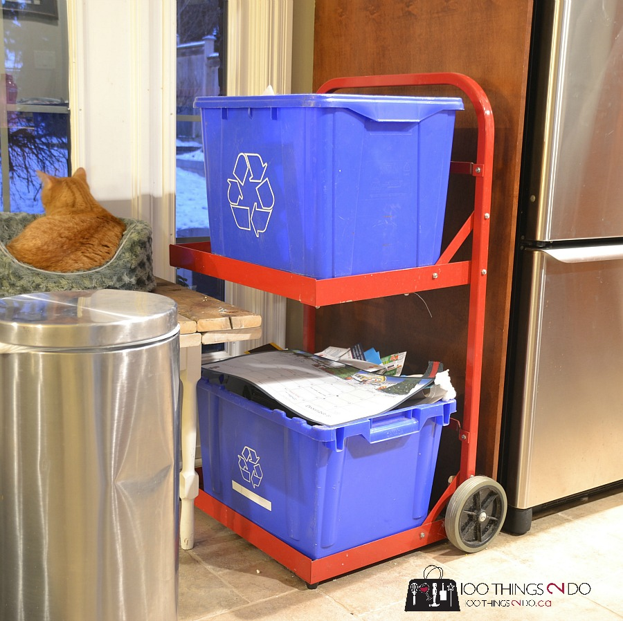 Recycling bins near the garbage help to encourage recycling