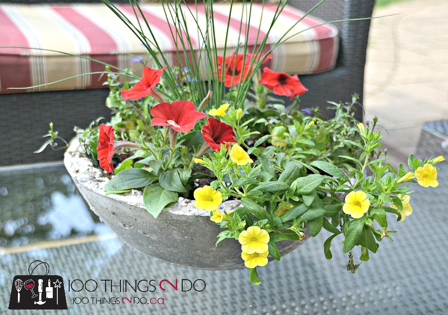 DIY Cement Planter, DIY Concrete Planter, make your own garden planters