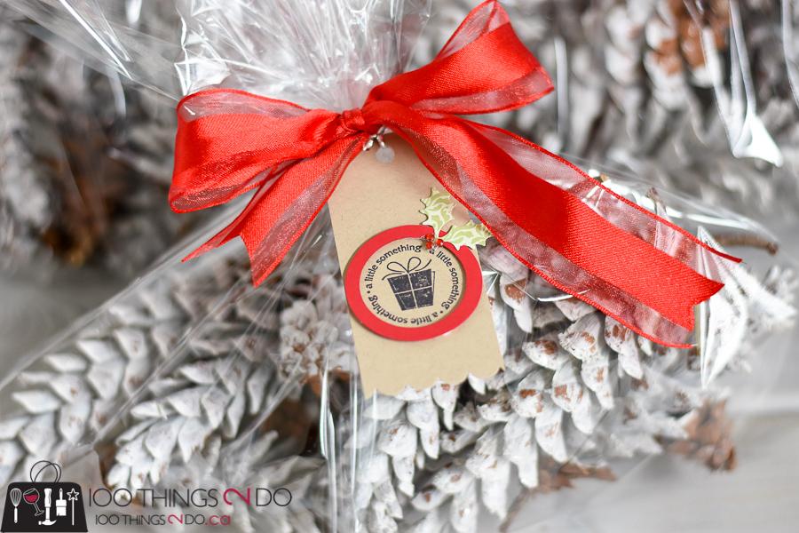 Dipped pinecones, white pinecones, preparing pinecones for display, Christmas pinecones, pinecone gifts