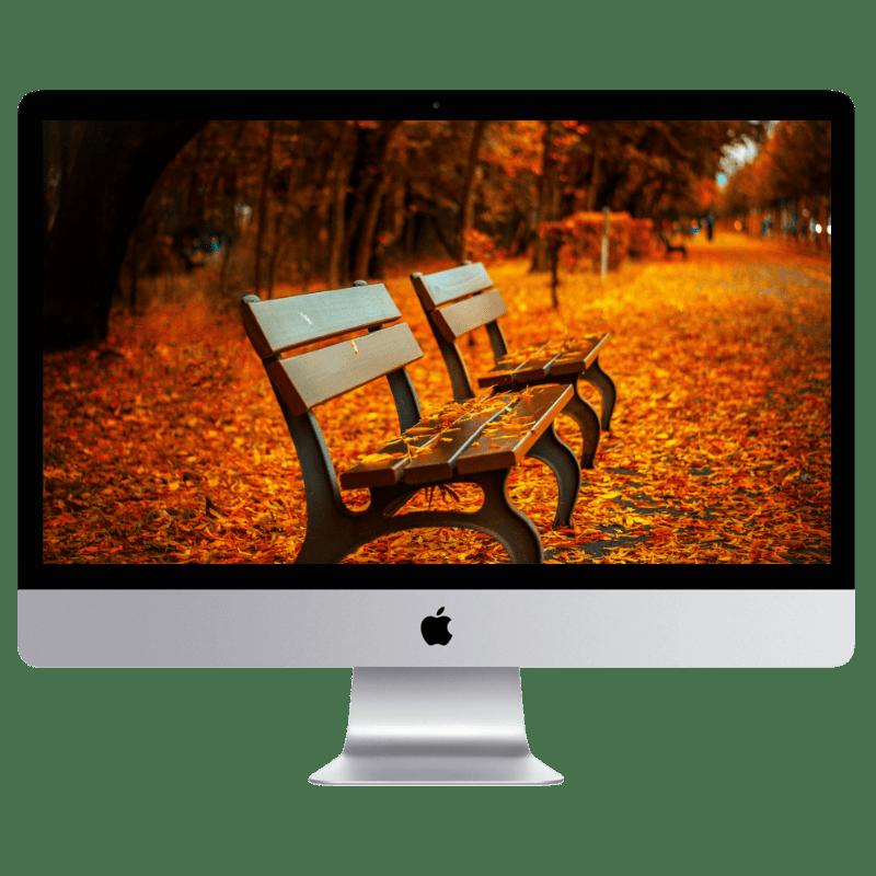 Fall desktop wallpapers, free Fall wallpapers, free Fall screensavers