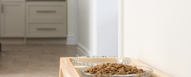 Raised dog dish, raised dog food stand, raised dog bowls