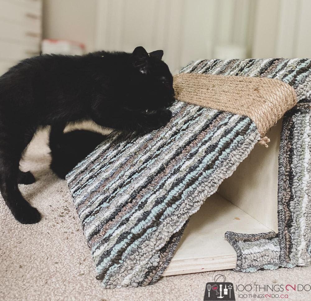 DIY cat scratching post, DIY scratching post, cat scratching post