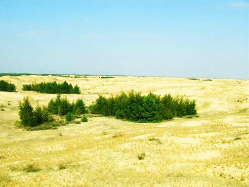 Алёшкинские пески