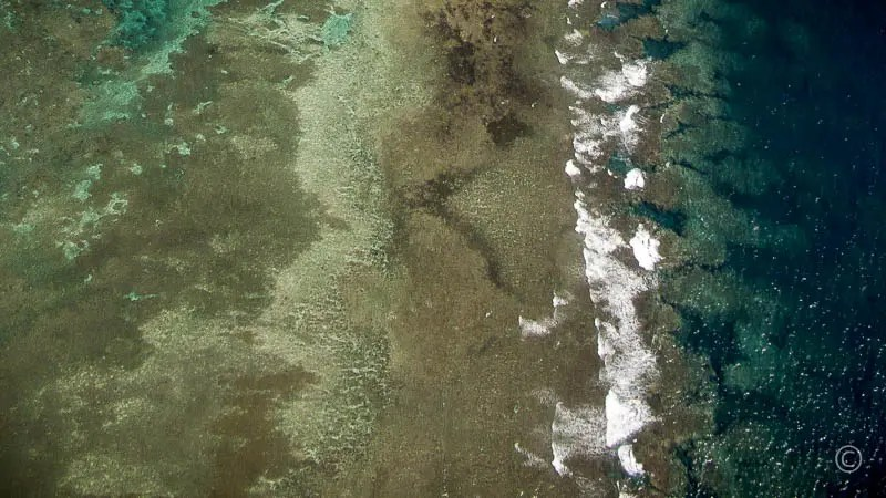 Nature Patterns: Island Beach Aerial View