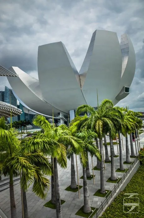 Singapore Art Science Museum