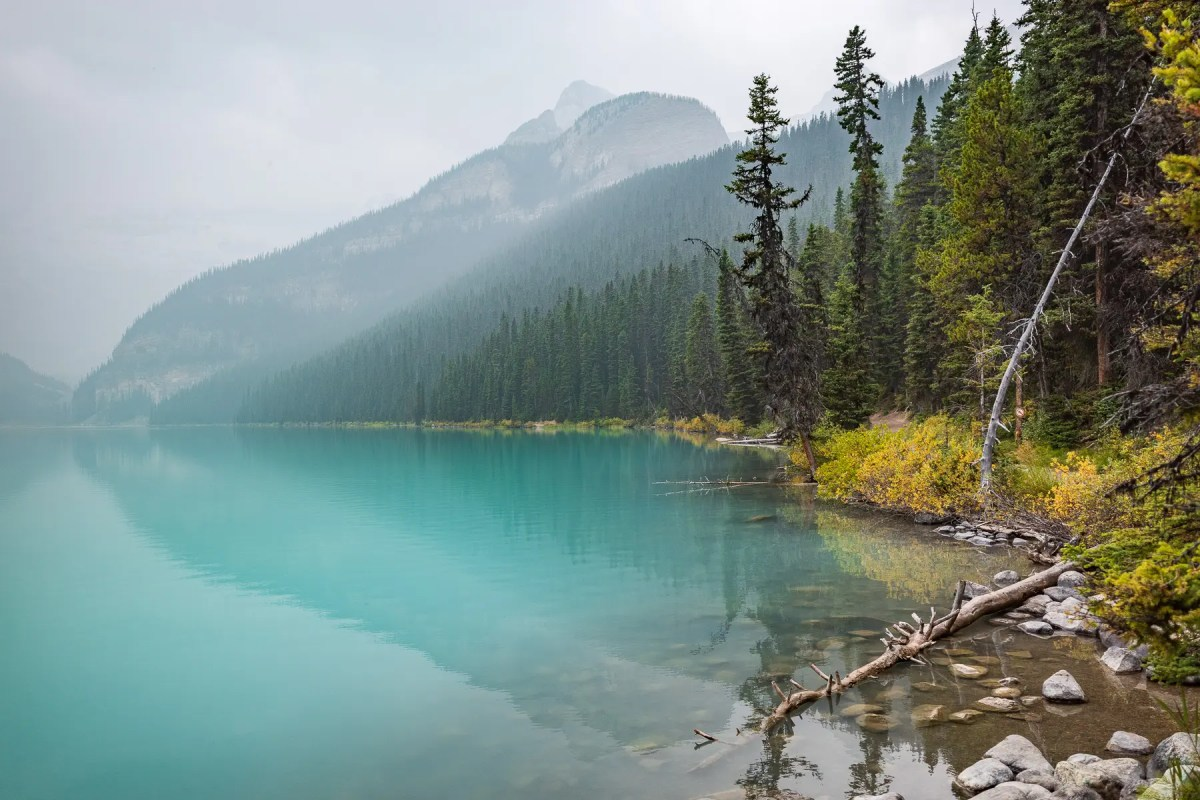 Smokey Lake Louise