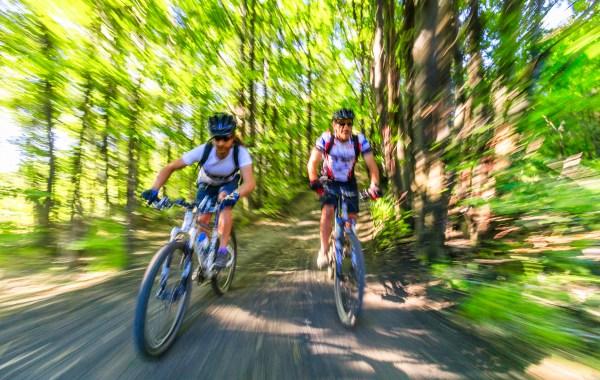 mountain bike tra i boschi di castagno nella zona di Pietracannone sull'Etna
