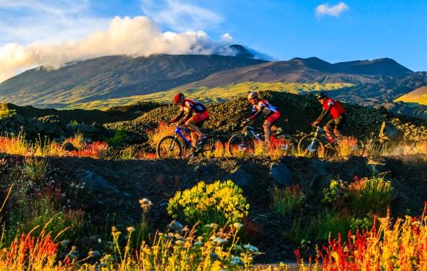Escursione in mountain bike tra i fiori d'alta quota