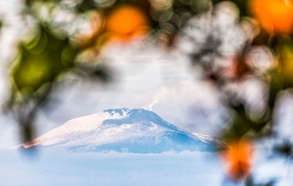 Le arance dell'Etna