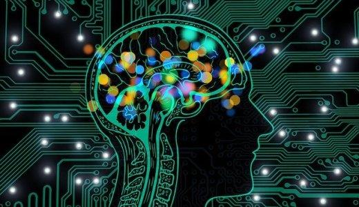 【2020年版:脳科学の本のおすすめ】大学で心理学を学んだ僕がランキングで厳選