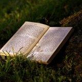 『20歳の自分に受けさせたい文章講義』要約まとめ【文章術の極意が学べる神本】