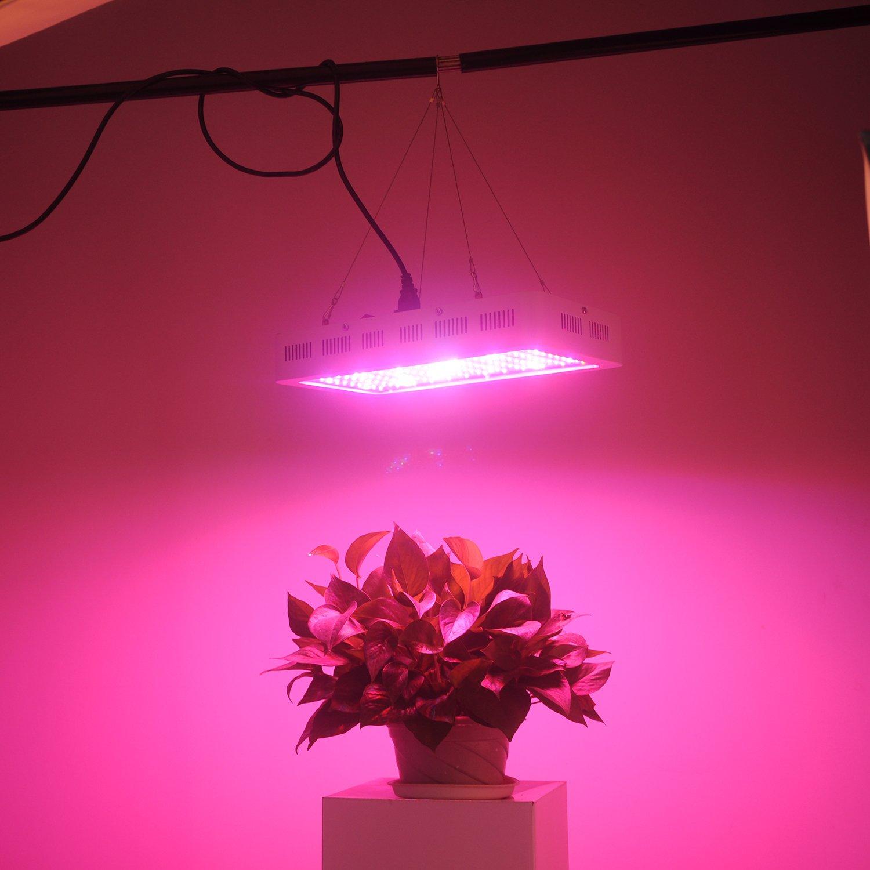 Reviews Led Grow Lights