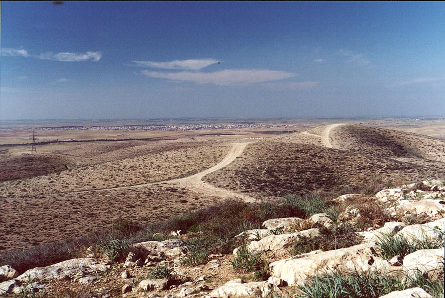 PikiWiki_Israel_17458_Rahat_city_from_hills_of_North