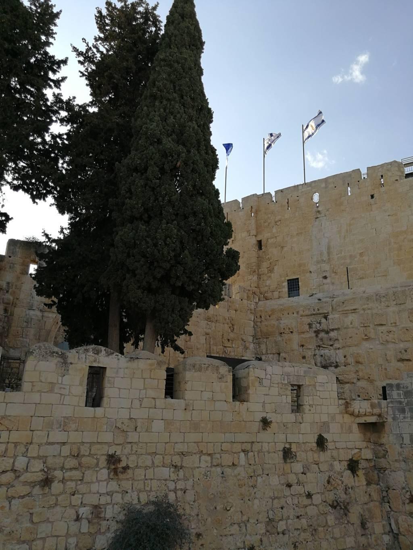 Jerusalem_040916 (93) David Cit