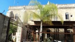 Alberello_locale_-_panoramio Kafar Kana