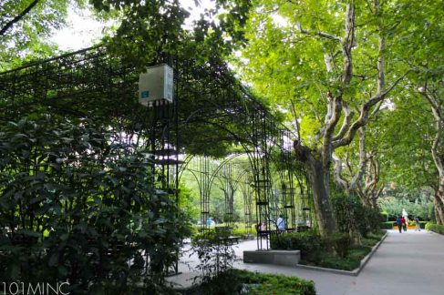 french concession-28