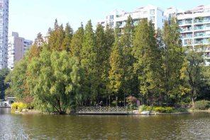 shanghai zhongshan park-4