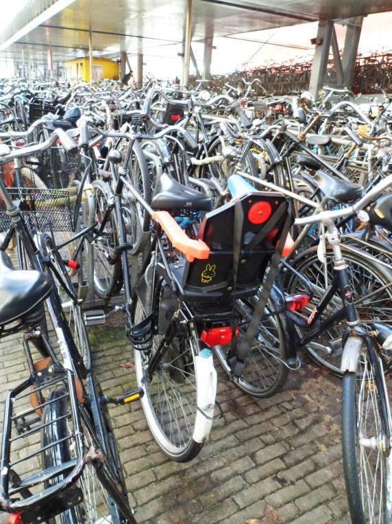bicis amterdam