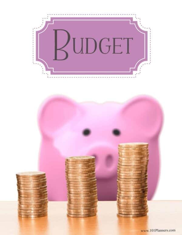 budget binder