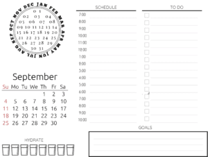 Hourly schedule, calendar, water tracker and to checklist
